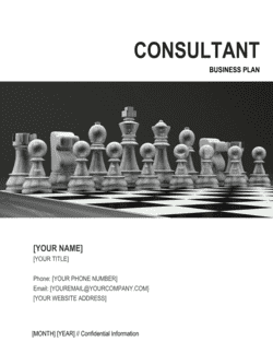 Consultant Business Plan