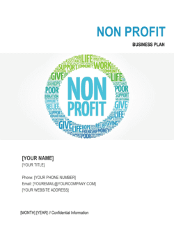 Non-profit Organization Business Plan 2