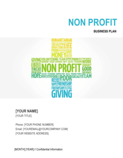Non-profit Organization Business Plan