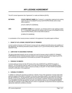 API License Agreement