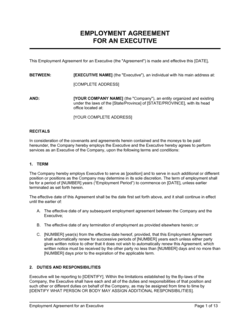 Employment Agreement Executive with Car Allowance