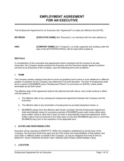 Employment Agreement Executive