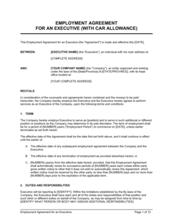 Employment Agreement Executive2